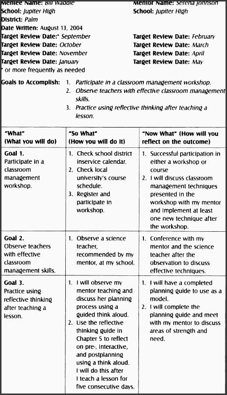 table a 3 example high school ese mentee mentor action plan