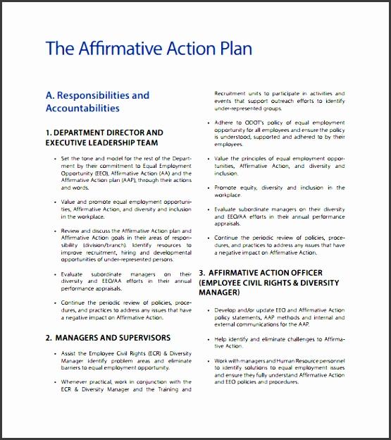 Diversity Action Plan Template  Resume Ideas  NamanasaCom
