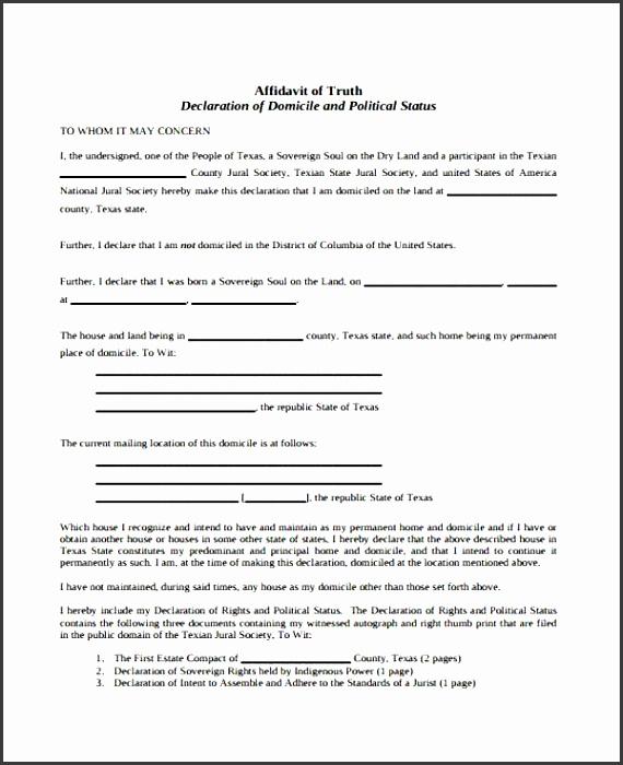 6 affidavit form templates - sampletemplatess