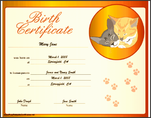 6 Birth Certificate Templates - SampleTemplatess ...