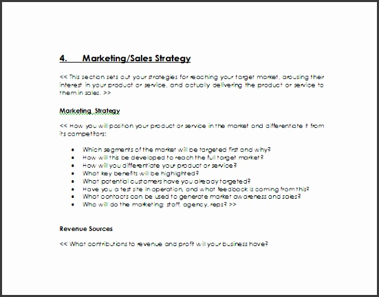 Business Sales Plan Template  Sampletemplatess  Sampletemplatess