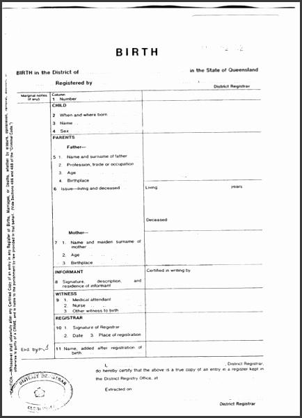 Certificate Of Birth Template  Sampletemplatess  Sampletemplatess