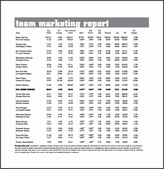 team marketing report pdf template free