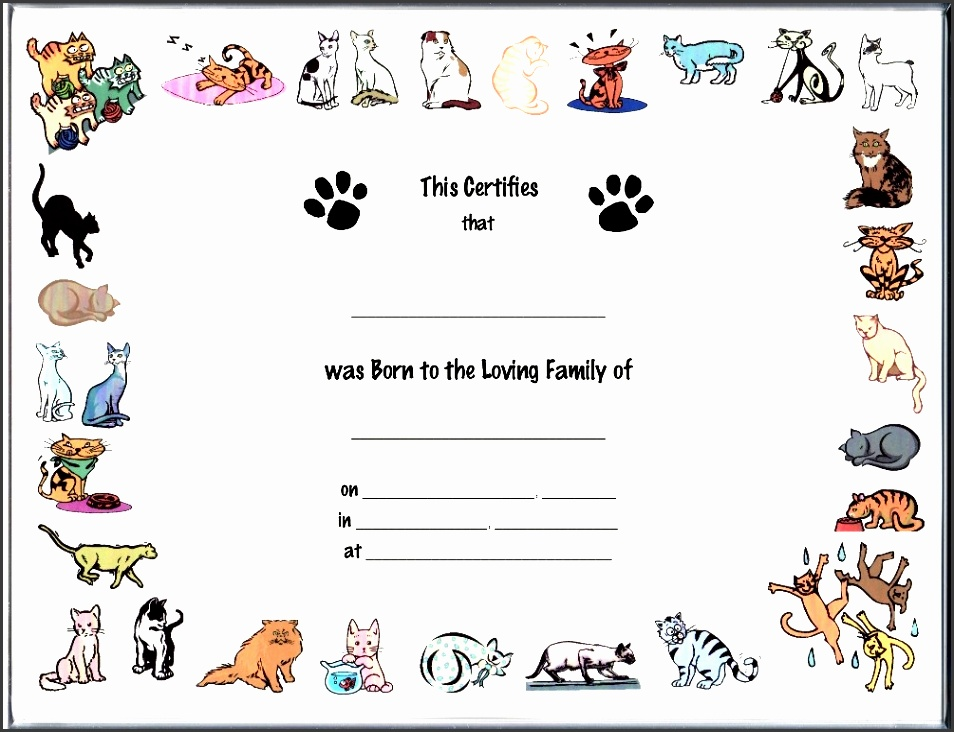 6 creative birth certificate template sampletemplatess dog birth certificate template printable pet birth certificate template template yadclub Gallery