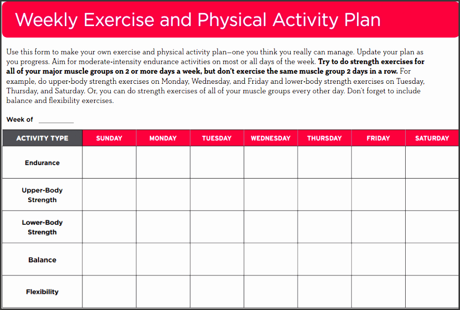 4 daily exercise planner template sampletemplatess for Activity programme template