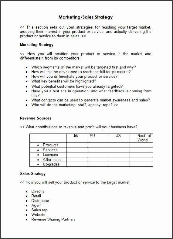 strategy sales plan