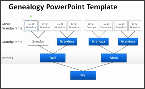 10 free genogram templates sampletemplatess