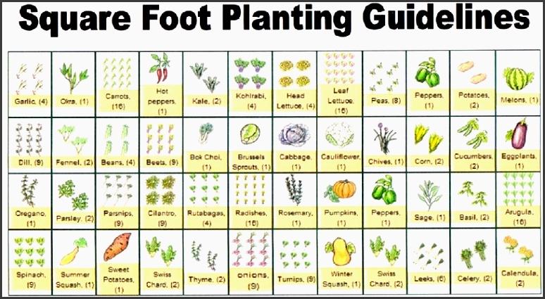 8 Garden Planner Layout - SampleTemplatess - SampleTemplatess