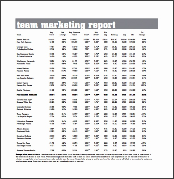 team marketing report pdf template free