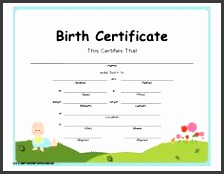 5 newborn birth certificate template sampletemplatess certificate of birth printable certificate yadclub Image collections