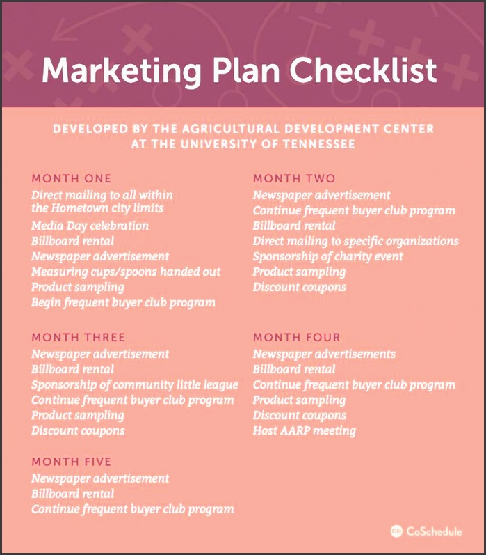 6 Organization Advertising Plan Template For Free