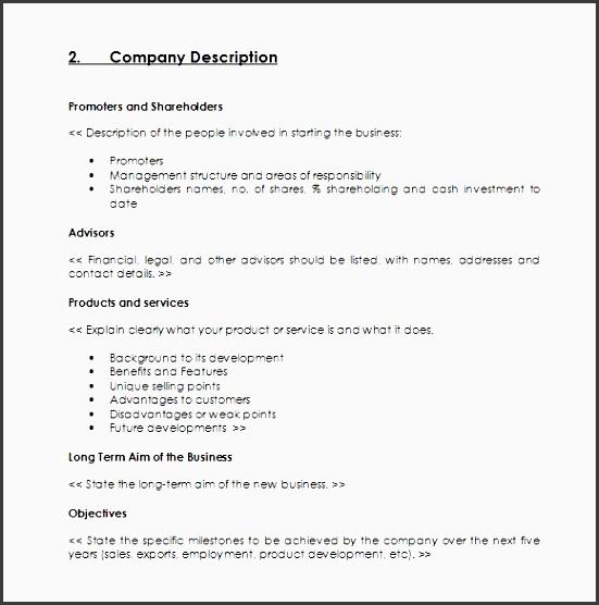 pany sales plan format