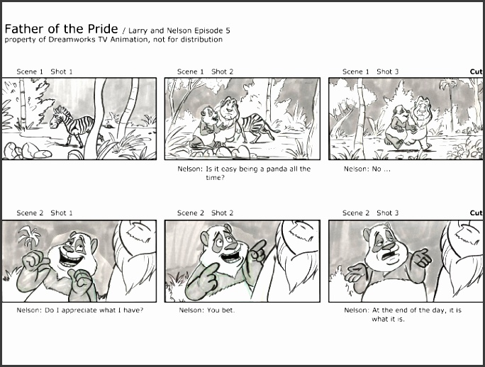 professional storyboard sample