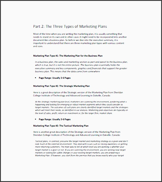 10 tactical marketing plan template editable in ms word. Black Bedroom Furniture Sets. Home Design Ideas