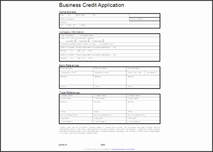 Business credit application form template free eczalinf business credit application form template free accmission Image collections