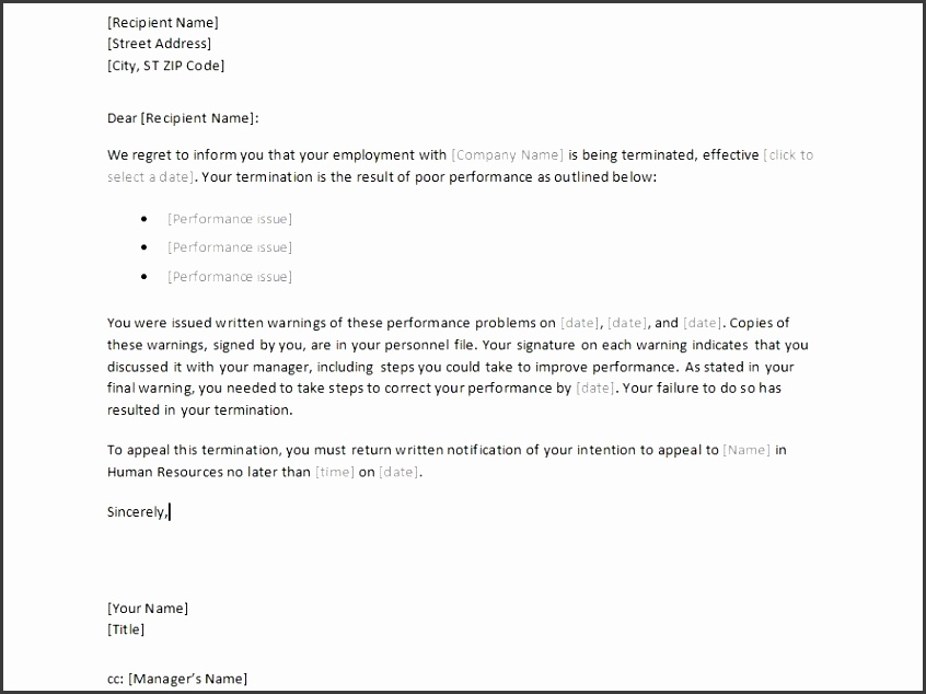 Sample Employee Termination Letter Template employment decline offer letter