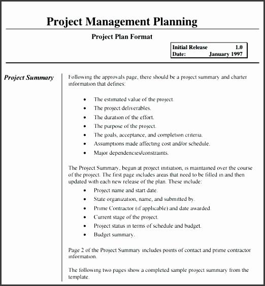 9 Erp Project Plan Template