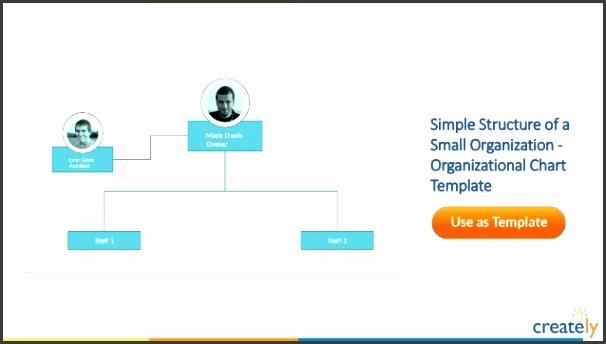 Organizational Chart Template For a mercial Bank