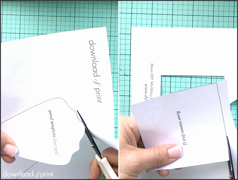 Free printable petal template for paper flowers