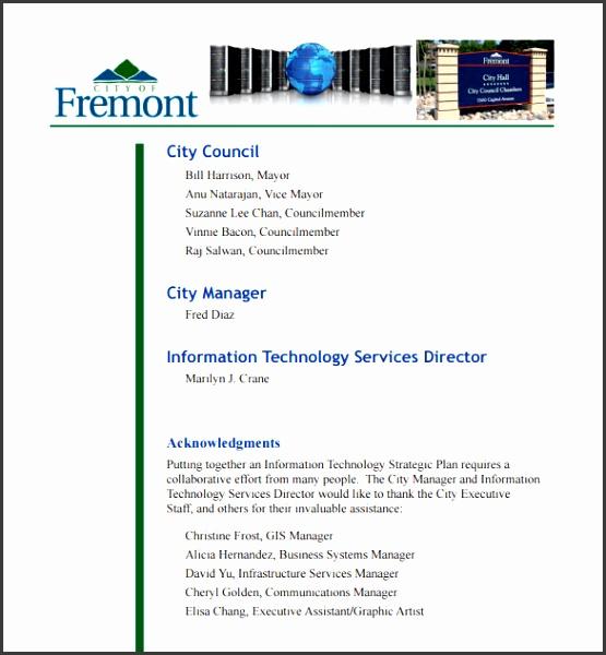 Information Technology Strategic Plan Template PDF
