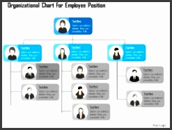 Organizational Chart For