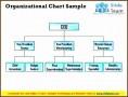 8  organizational Chart Sample
