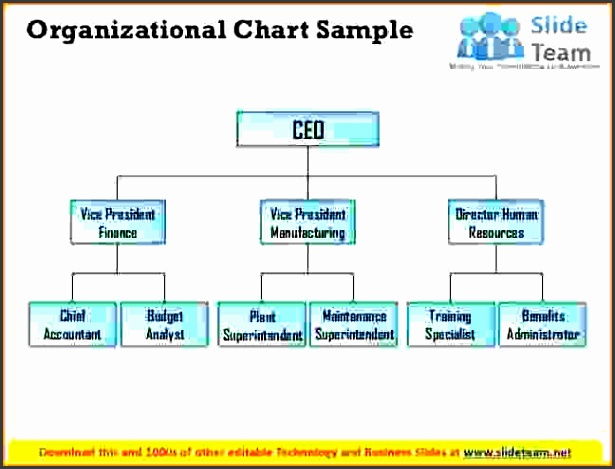 8 organizational chart sample