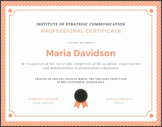Peach Grey Stripes Border Professional Certificate