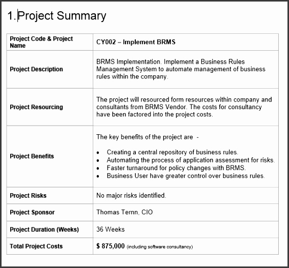 Software Business Proposal Template Project Proposal Template Free Project Management Templates Download