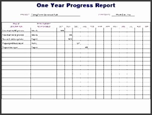 Yearly Project Progress Template