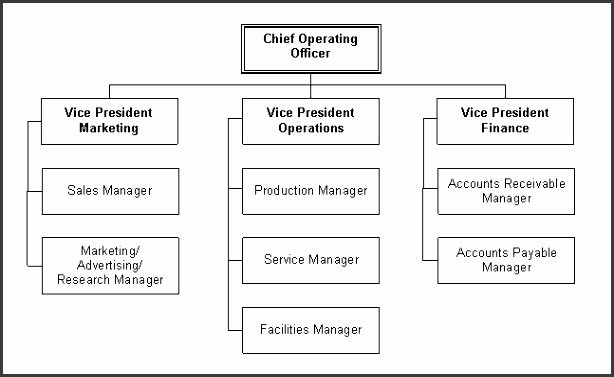 This chart shows how operations should be structured for a restaurant bar business and who reports to who Obviously you may not need some positions i e