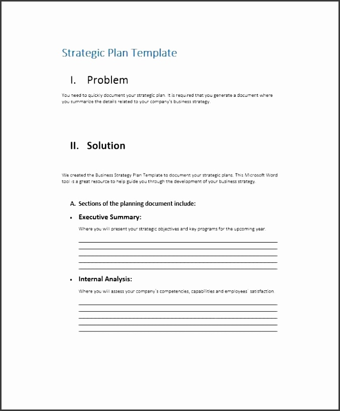 Printable Strategic Plan Template 09