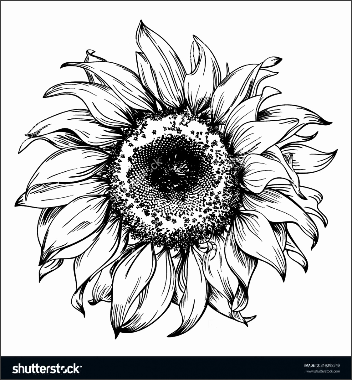 Download image black and white
