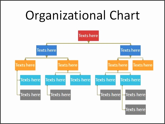 Printable Organizational Chart Template 19