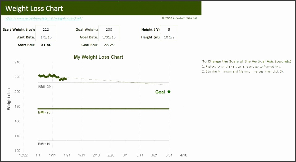 weight loss chart free excel template