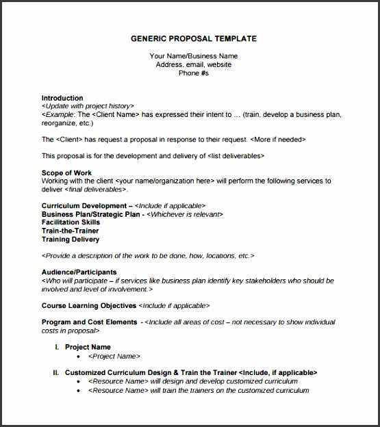 Sample Generic Business Proposal Template
