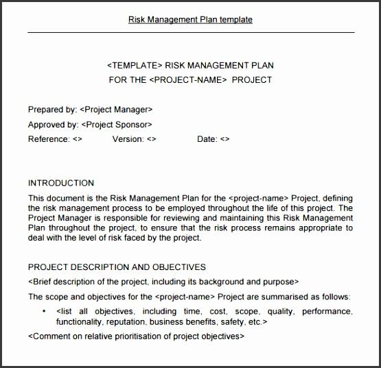 Sample Risk Management Plan Template