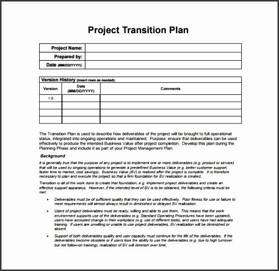 6 Employee Transition Plan Template