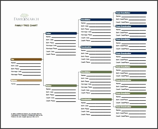 family tree template excel this family tree chart template covers 4 generations here you have the