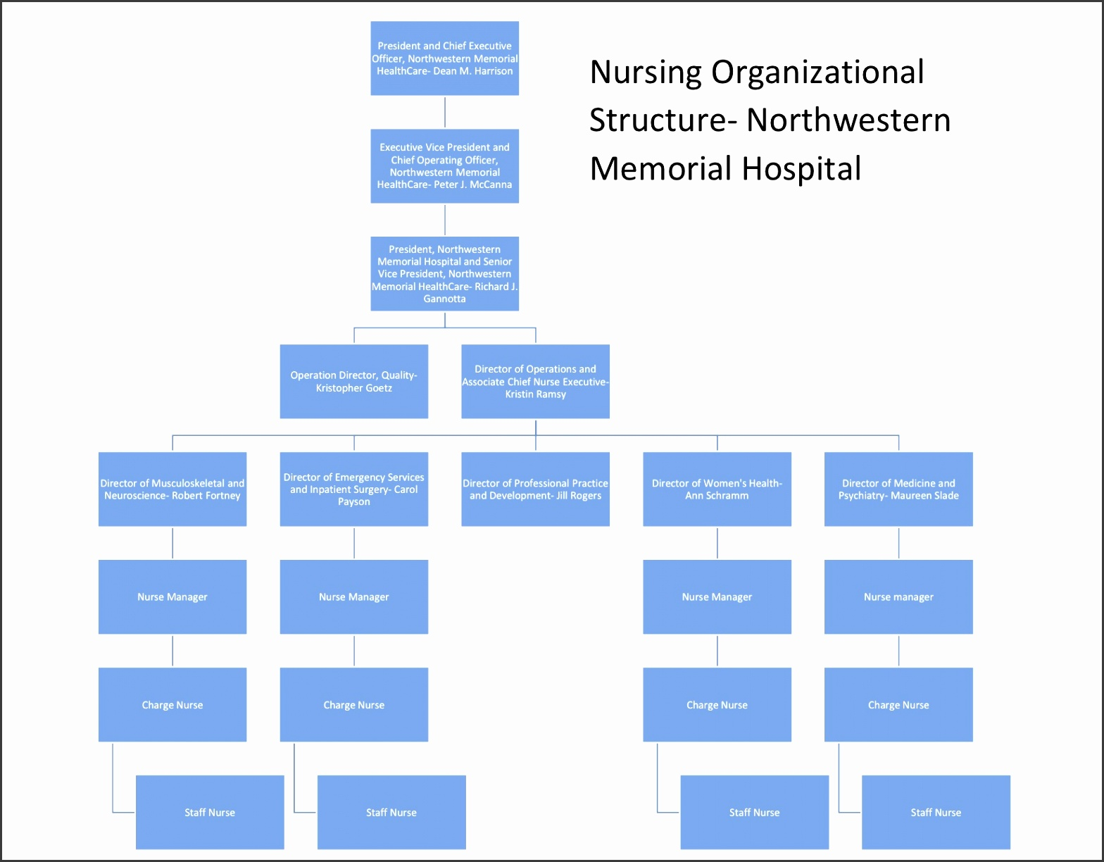 Northwestern Memorial Organizational Structure including Nursing
