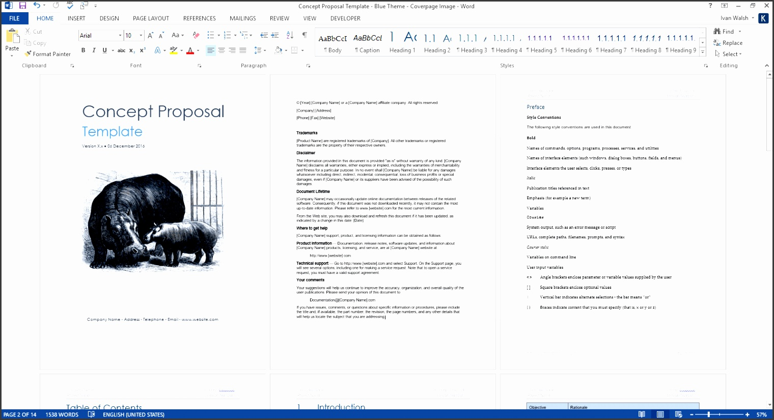 concept proposal ms word template 1