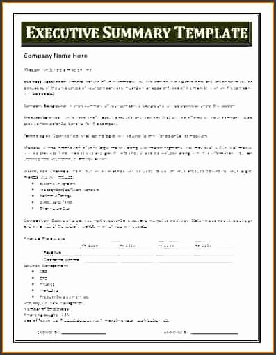 project summary templatemple executive summary template