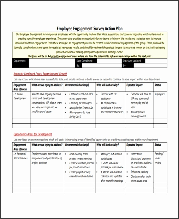 Employee Survey Action Plan Example PDF Download