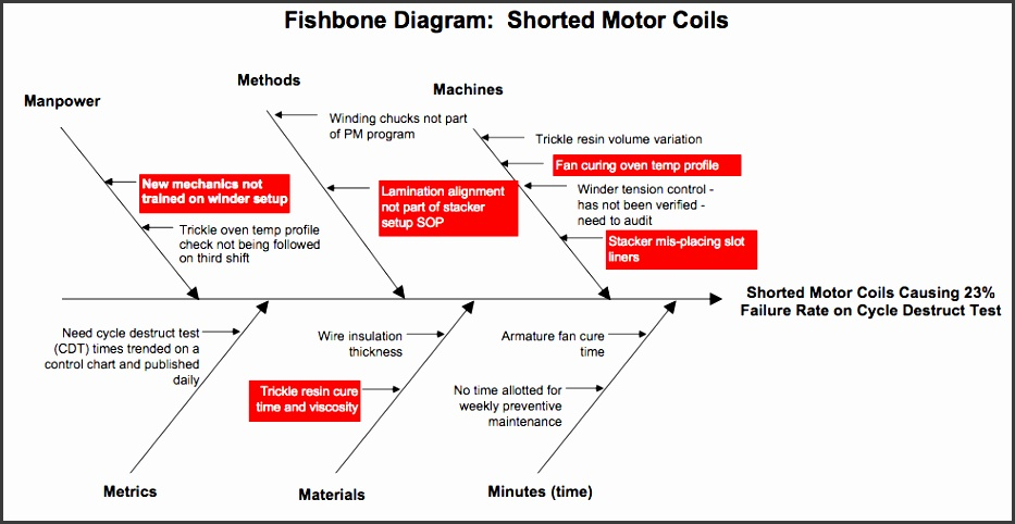 Fishbone Diagram Priorities