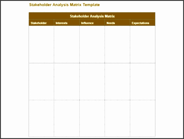Stakeholder Analysis Matrix Example