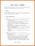 Letter Of Agreement Template Between Two Parties