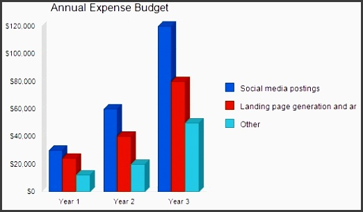 4 2 expense bud by year