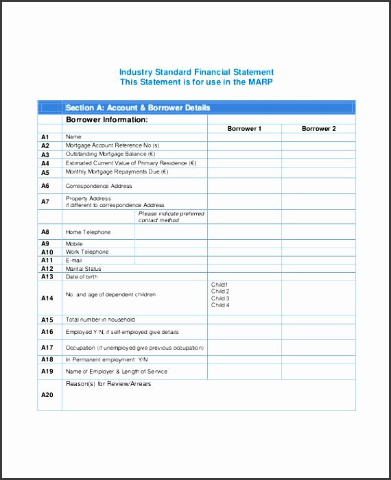 industry standard financial statement template