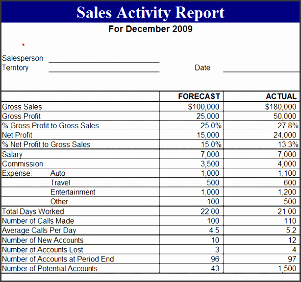daily activity report template free