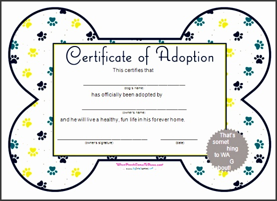 simple adoption certificate template free